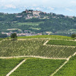 Langhe, vineyards — Stock Photo #33179319