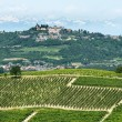 Langhe, vineyards — Stock Photo #33190103