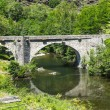 Cevennes: old bridge — Stock Photo #33775917