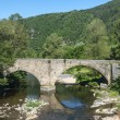 Cevennes: old bridge — Stock Photo #33829123