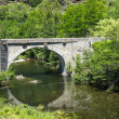 Cevennes: old bridge — Stock Photo #34225161