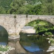 Cevennes: old bridge — Stock Photo #34256217