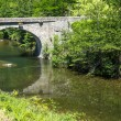 Cevennes: old bridge — Stock Photo #34539691