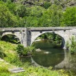 Cevennes: old bridge — Stock Photo #34839087
