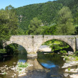 Cevennes: old bridge — Stock Photo #34897449