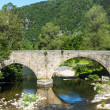 Cevennes: old bridge — Stock Photo #35194687
