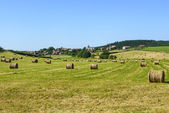 Country landscape in Aveyron (France) — Stock Photo