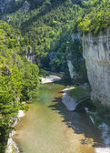 Gorges du Tarn — Stock Photo