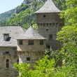 Gorges du Tarn, castle — Stock Photo