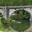 Stock Photo: Cevennes: old bridge