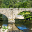 Cevennes: old bridge — Stock Photo #35548787