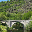 Cevennes: old bridge — Stock Photo #35825891