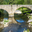 Cevennes: old bridge — Stock Photo #35847211