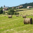 Country landscape in Aveyron (France) — Stock Photo #35912173