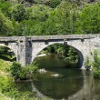 Cevennes: old bridge — Stock Photo