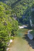 Gorges du Tarn — Stockfoto