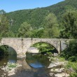 Cevennes: old bridge — Stock Photo #36450667