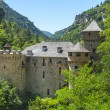 Gorges du Tarn, castle — Photo