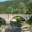 Cevennes: old bridge — Stock Photo #36773897