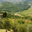 Farm in Tuscany near Artimino — Stock Photo #6911269