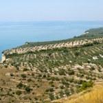 The coast of Gargano (Puglia, Italy) at summer — Stock Photo #7003345
