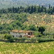 Farm in Tuscany near Artimino — Stock Photo #7166212