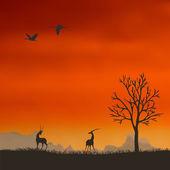 Antilope en arrière-plan du coucher de soleil — Vecteur