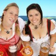 Munich beer festival — Stock Photo #12472546