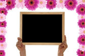 Gerbera Background with Blackboard — Stock Photo