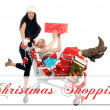 Christmas Time — Stock Photo #14610555