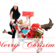 Christmas Time — Stock Photo #14610609