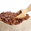 Coffee beans — Stock Photo #16871333