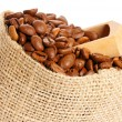 coffee beans — Stock Photo #16871545