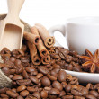 coffee beans — Stock Photo #16872493