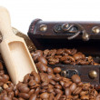 Coffee beans — Stock Photo #16873145
