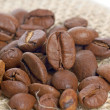 Coffee beans — Stock Photo #16873905