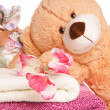 Teddy Bear — Stock fotografie #17840697