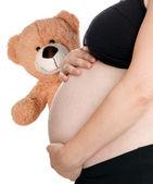 Gravid kvinna med teddy — Stockfoto