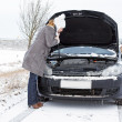 Car in Winter — Stock Photo #18744971
