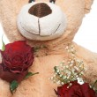 Teddy Bear — Stock Photo #22708989