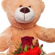 Teddy Bear — Stock Photo #22709067