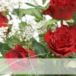 Red roses — Stock Photo #22709189