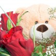 Teddy Bear — Stock Photo #22709303