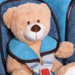 Teddy in car seat — Stockfoto #22764082
