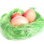 Easter nest — Stock Photo #22764736