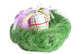 Easter nest — Stock Photo