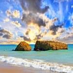 Atlantic beach — Foto de Stock