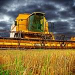 Combine Harvester — Stock Photo #22879016