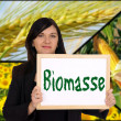 Biomass — Stock Photo