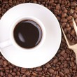 Coffee cup and coffee beans — Foto de Stock